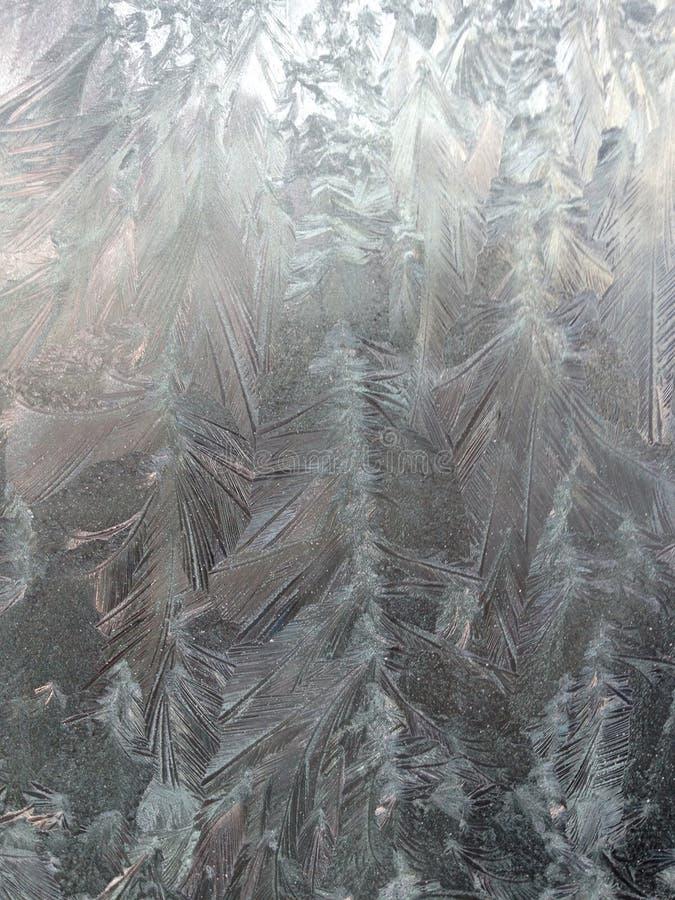 Пер Frost стоковое изображение