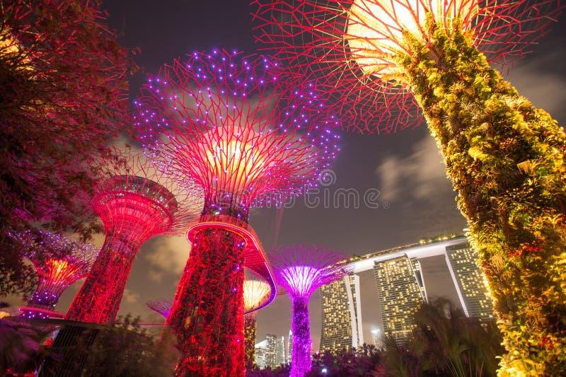 Пески залива рощи и Марины Supertree, Сингапур стоковые фото