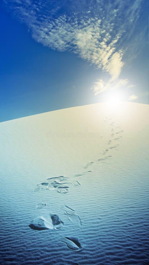 пески Мексики следов ноги пустыни новые белые стоковое фото