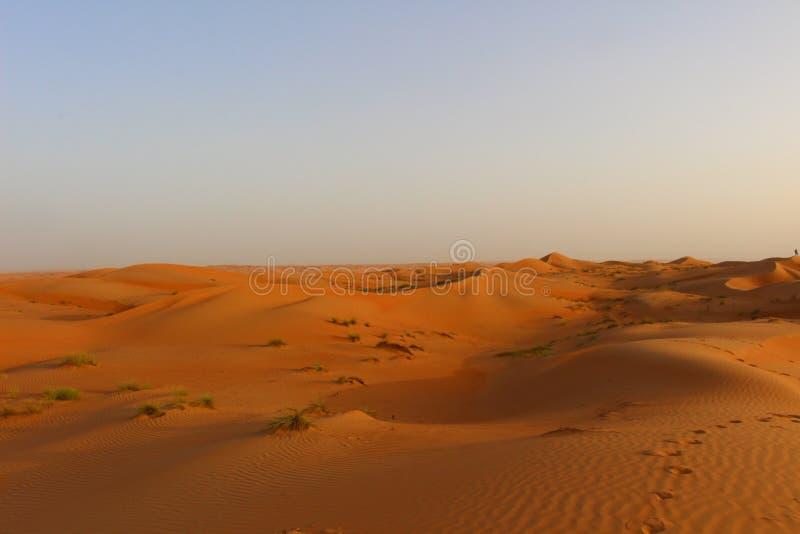 Пески Wahiba в Омане на заходе солнца стоковая фотография