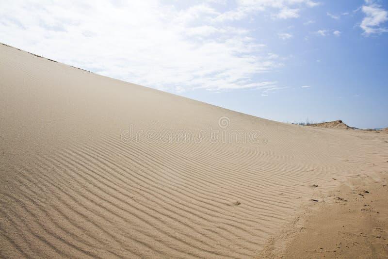 песок высокого ряда дюны динамически стоковое фото rf
