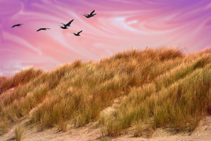песок дюны мистический стоковое изображение