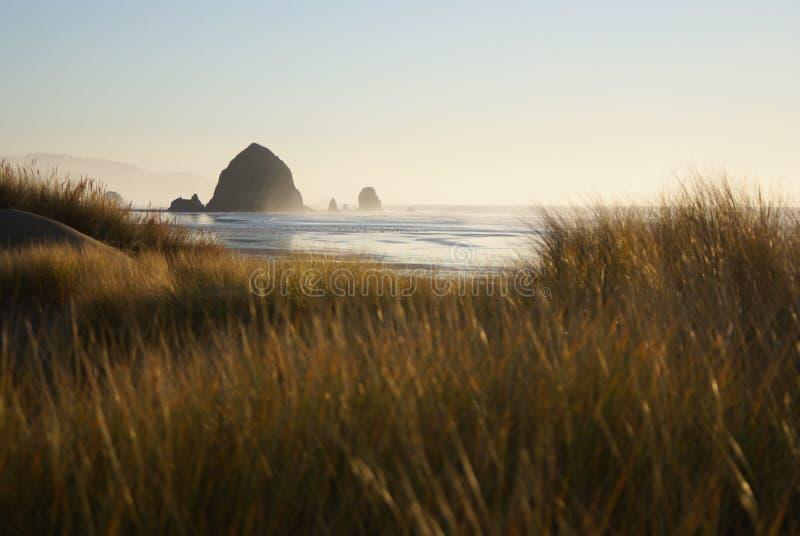 песок дюн карамболя пляжа стоковая фотография rf