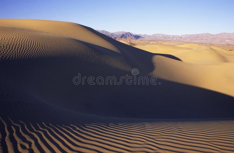 песок дюн пустыни стоковая фотография