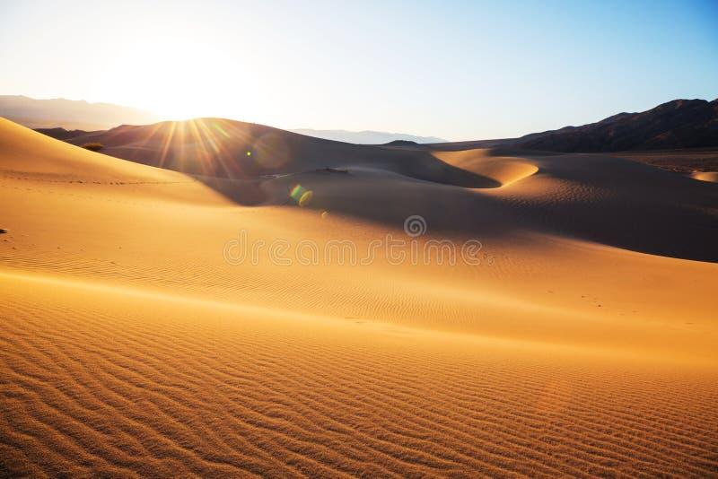 песок дюн california стоковые изображения rf