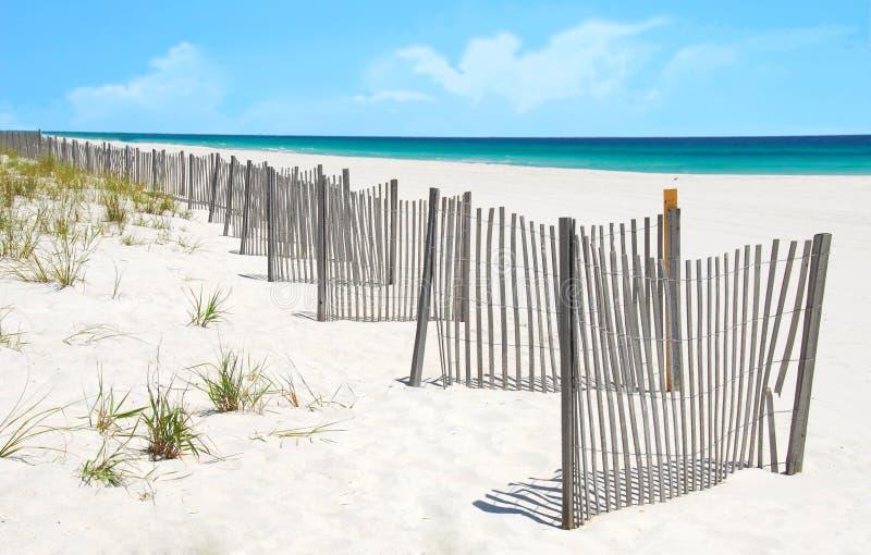 песок загородки дюны пляжа милый стоковое фото rf