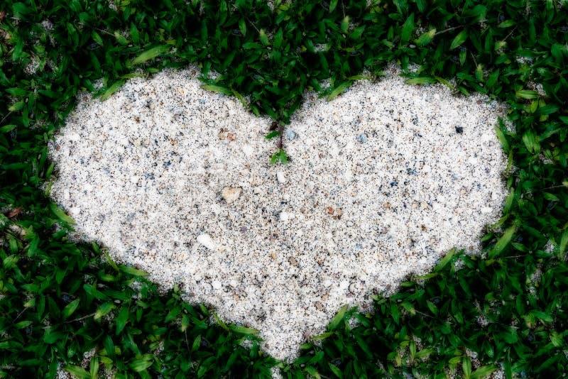 Песок рамки зеленой травы в форме сердца стоковые изображения
