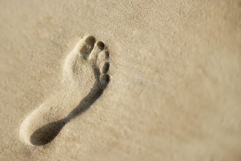 песок следа ноги стоковые изображения