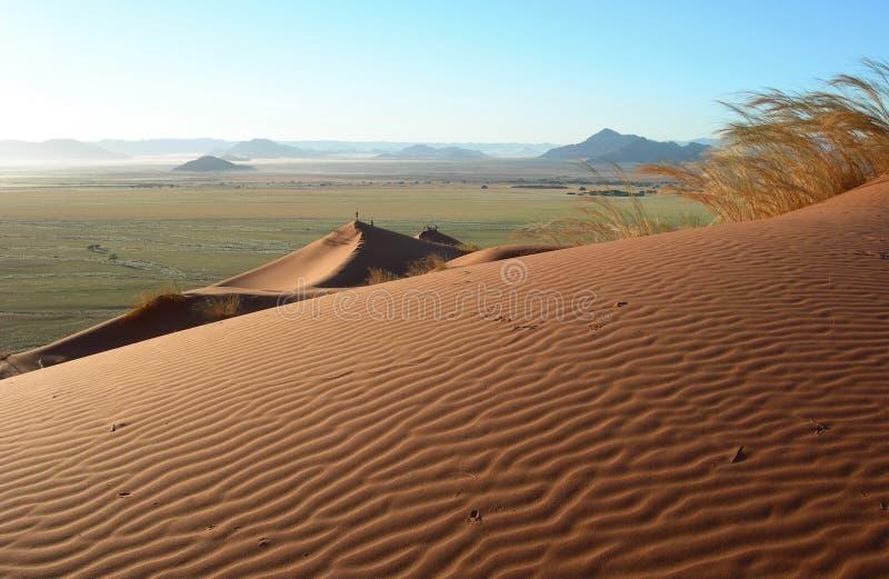 песок kalahari дюн пустыни стоковая фотография