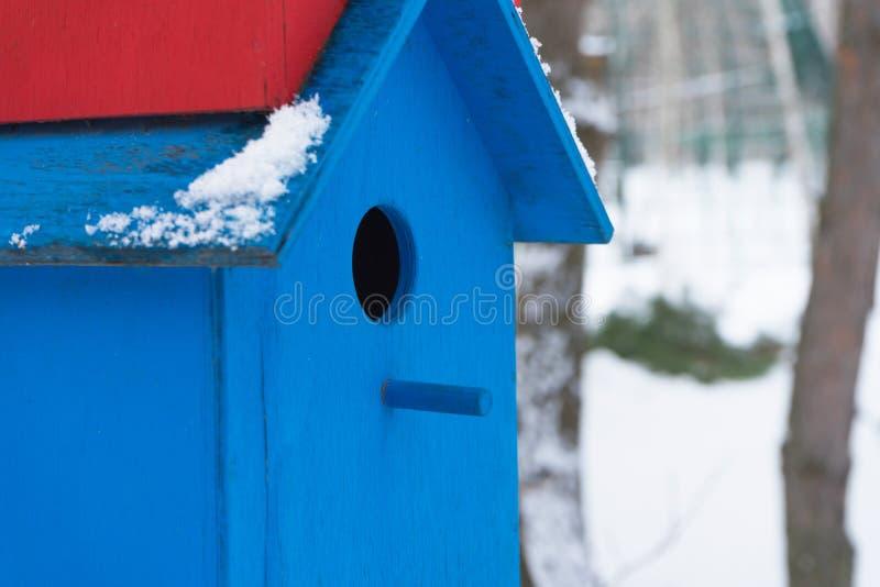Пестротканые birdhouses в деревьях в городе паркуют Зима стоковое изображение rf