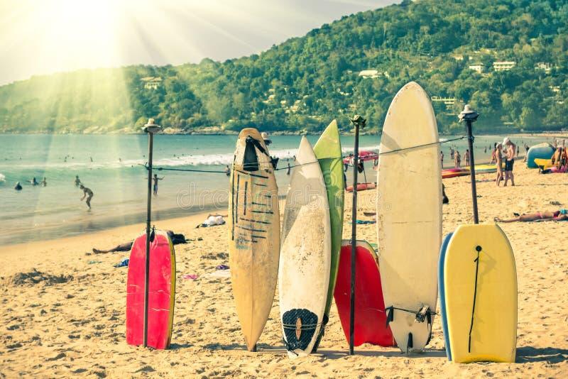 Пестротканые surfboards на Kata приставают к берегу в острове Пхукета стоковые изображения rf