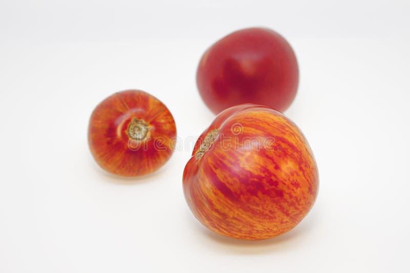 Пестрые томаты и красный томат с необыкновенной естественной картиной Красивые необыкновенные 3 томата стоковое изображение