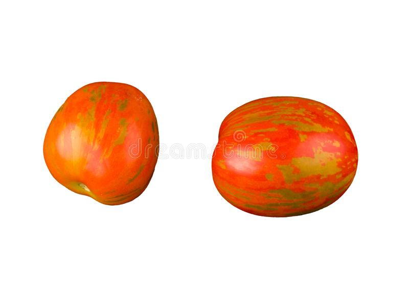 Пестрые томаты при необыкновенная естественная картина изолированная на белой предпосылке стоковое изображение rf