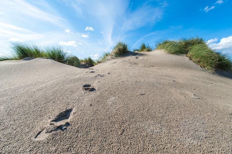 Песчанная дюна и ноги трассировок с травой и голубым небом стоковое изображение rf