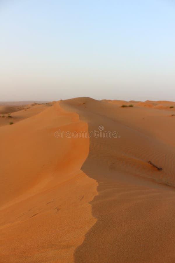 Песчанная дюна на заходе солнца в песках Wahiba в Омане стоковое фото rf