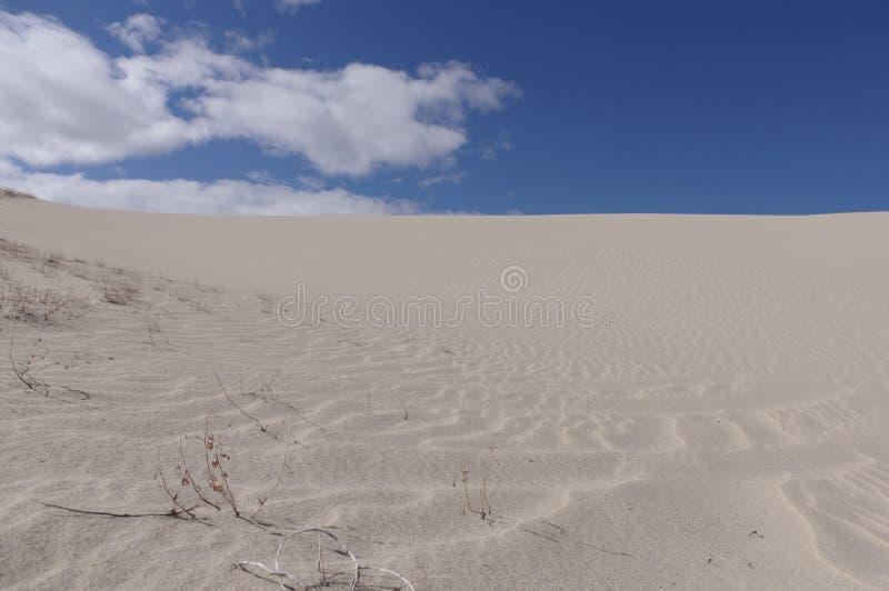 Песчанные дюны Вайоминг Killpecker США стоковая фотография