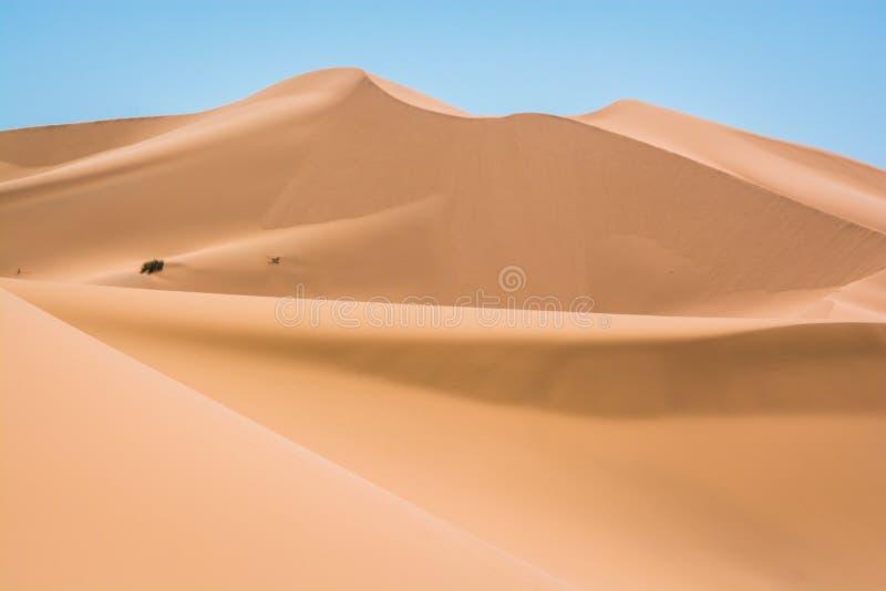 Песчанные дюны в эрге Chebbi стоковые изображения rf