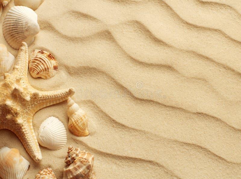 Песчанные дюны как предпосылка стоковое изображение