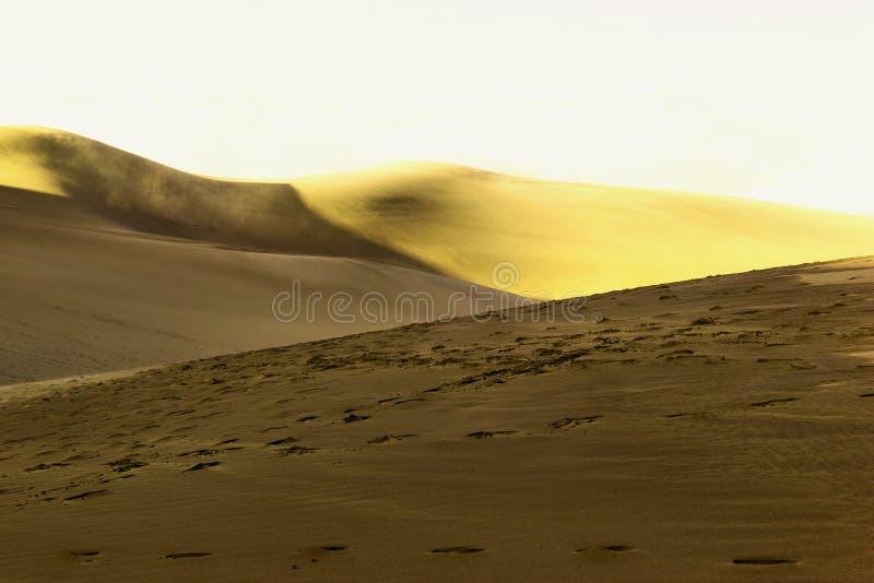 Песчанные дюны приближают к сумраку стоковое изображение