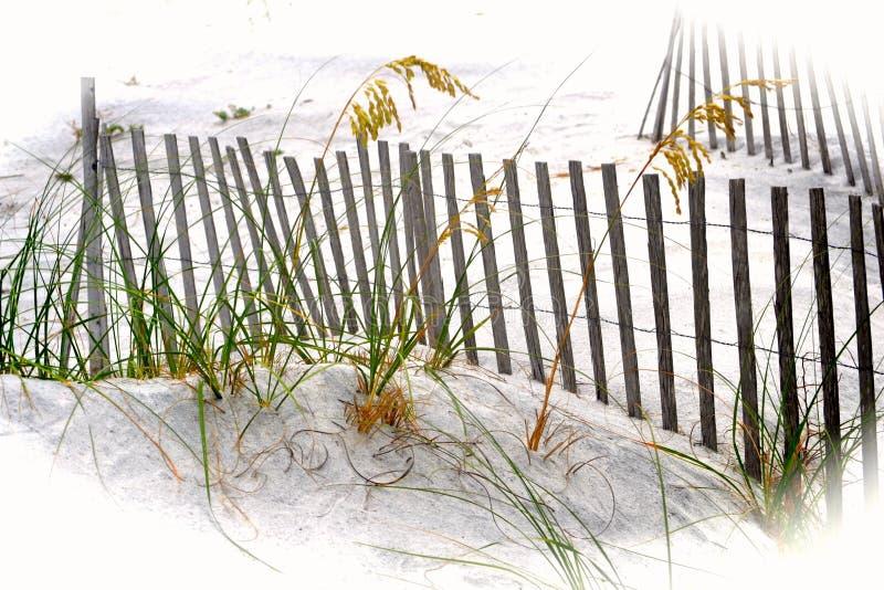 Песчанные дюны, травы & ограждать на пляже Santa Rosa, Флориде стоковое изображение