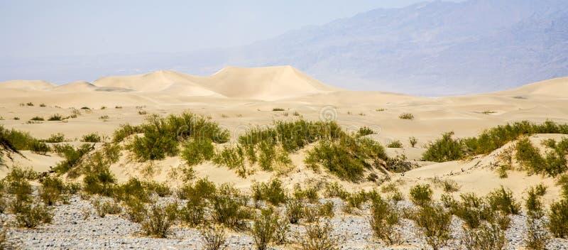 Песчанные дюны квартир Mesquite дезертируют, Death Valley стоковая фотография