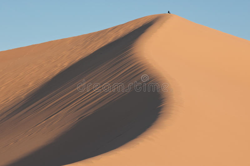 Песчанные дюны национального парка Death Valley стоковая фотография rf
