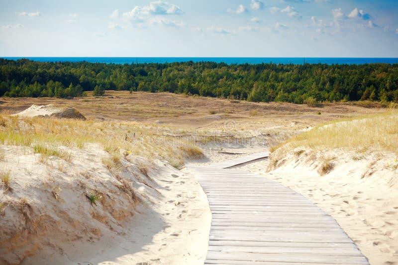 Песчанные дюны не далеко от Nida стоковая фотография rf