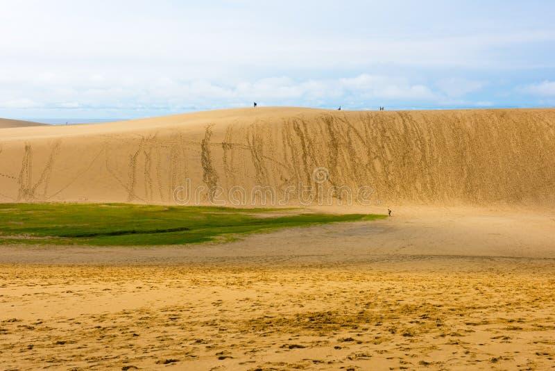 Песчанные дюны Tottori в Tottori, Японии стоковые фото