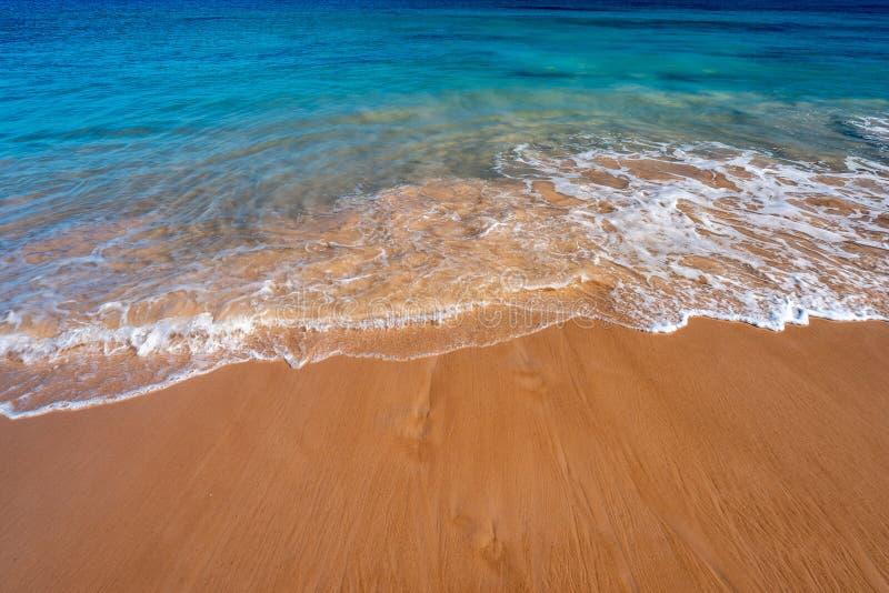 Песчаный пляж в западной Австралии стоковое изображение rf