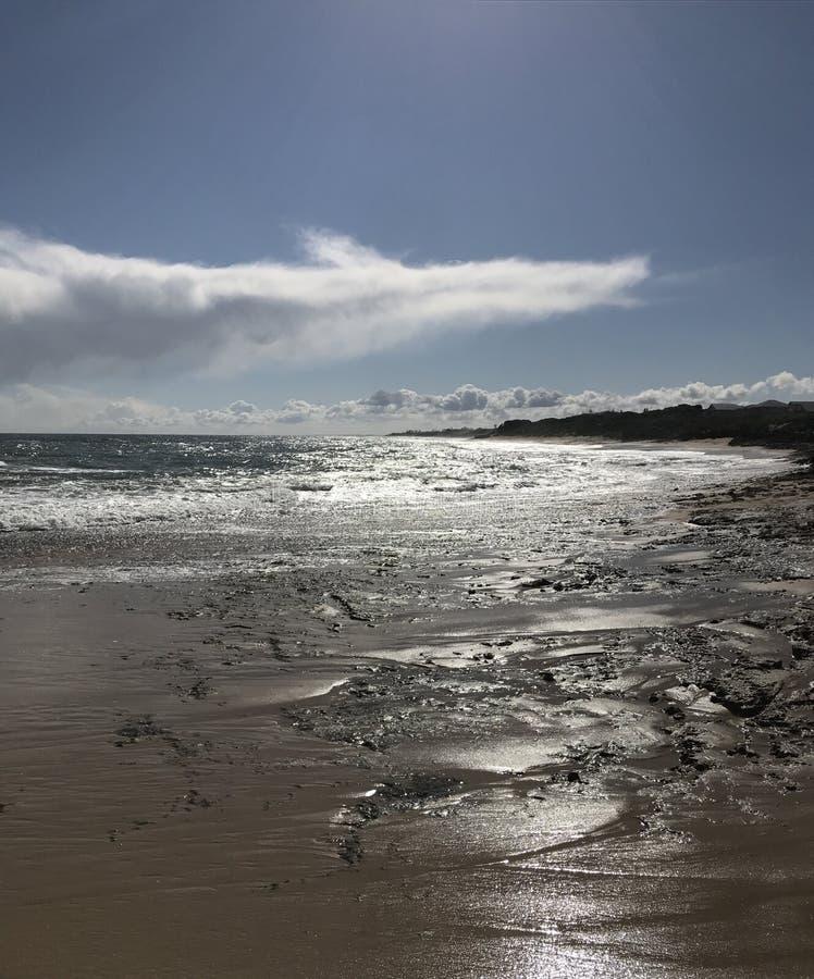 Песчаный пляж стоковое фото
