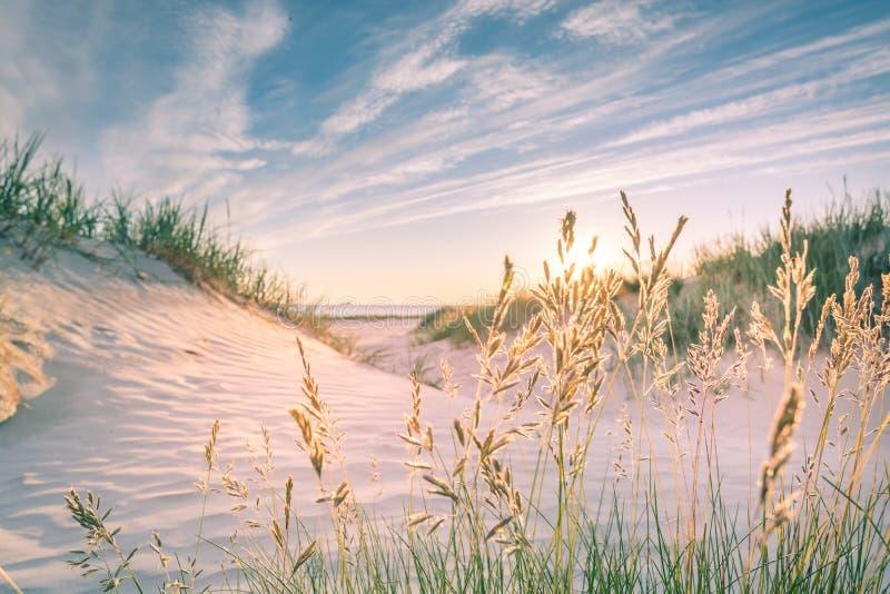 Песчаный пляж на заходе солнца стоковое фото