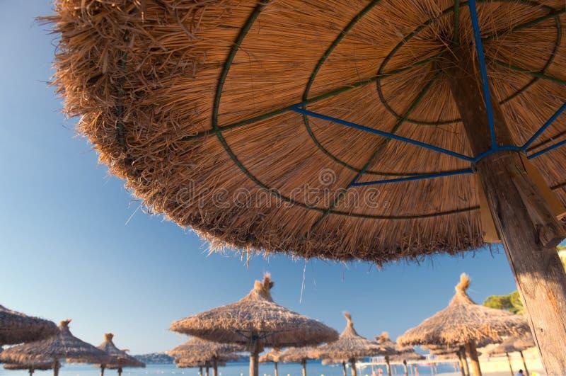 Песчаный пляж с зонтиками и Sunbeds соломы стоковые изображения