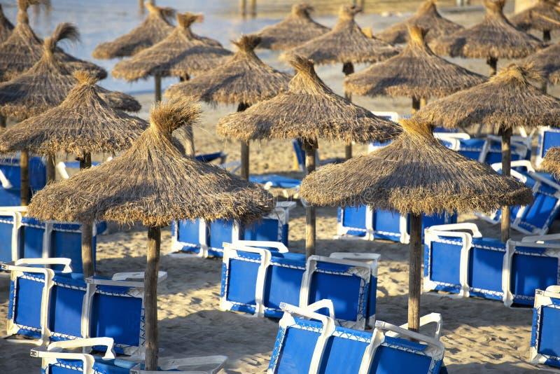 Песчаный пляж с зонтиками и Sunbeds соломы стоковые фото