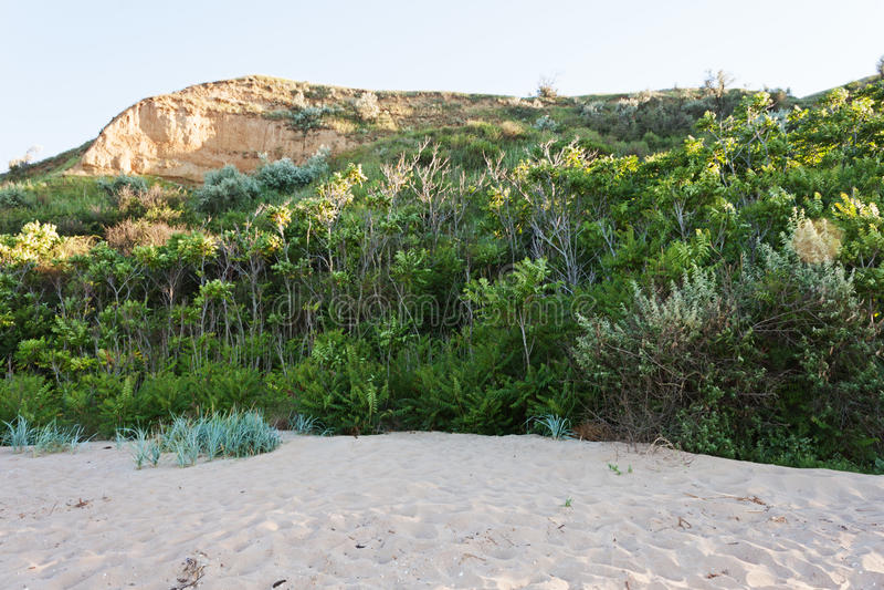 Песчаный пляж с чащами на фоне большого холма стоковое изображение