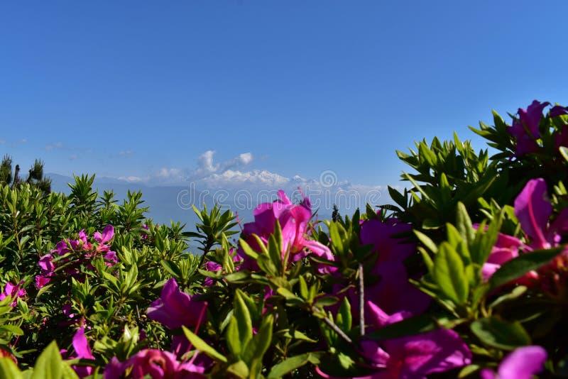 Петля Darjeeling Batasia стоковая фотография rf