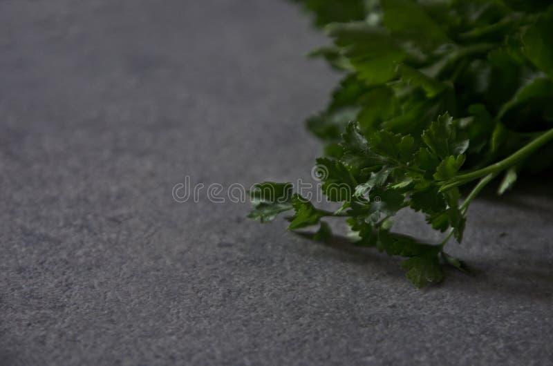 Петрушка на конце-вверх таблицы, предпосылка зеленых цветов стоковые фото