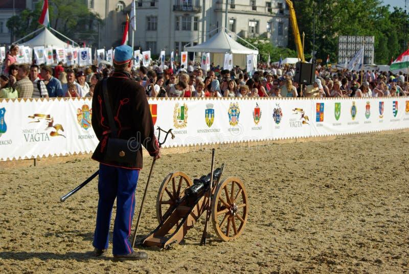 пехотинец карамболя стоковое фото rf