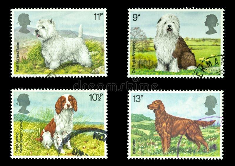 Печати почтового сбора Великобритании собак стоковая фотография