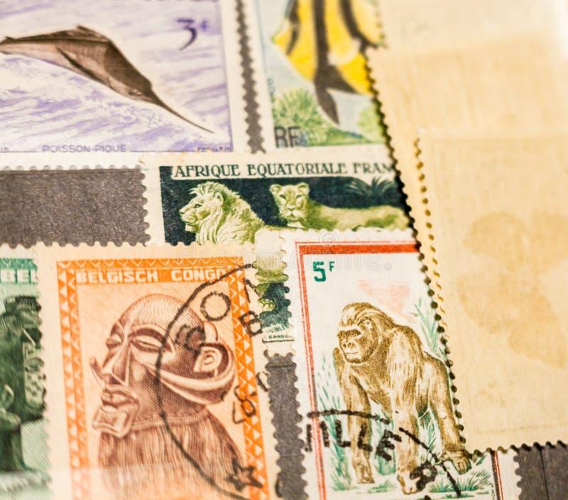 Печати различных африканских стран стоковая фотография