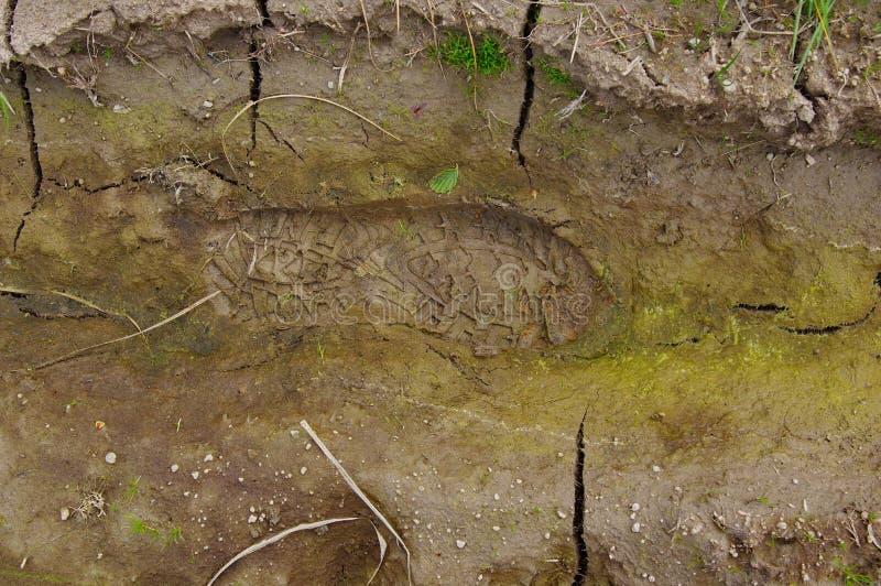 Печать ботинка в грязи стоковое изображение