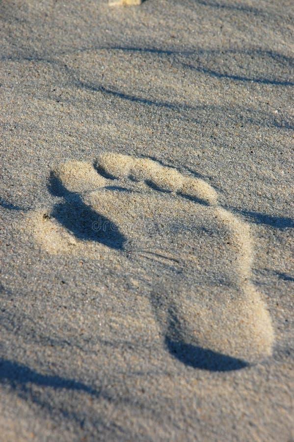 печать ноги стоковые изображения