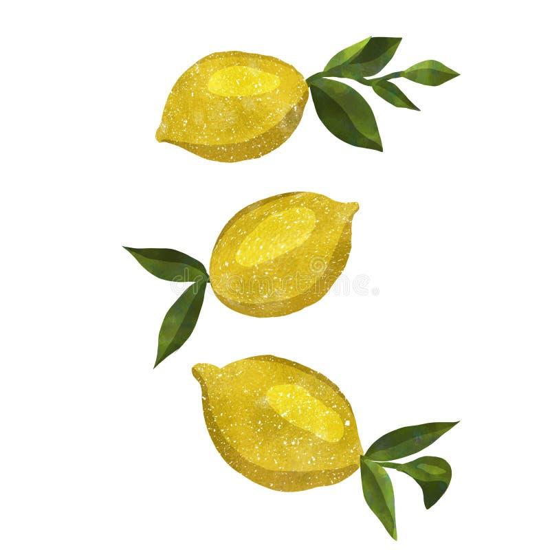 Печать с лимонами акварели стоковая фотография rf