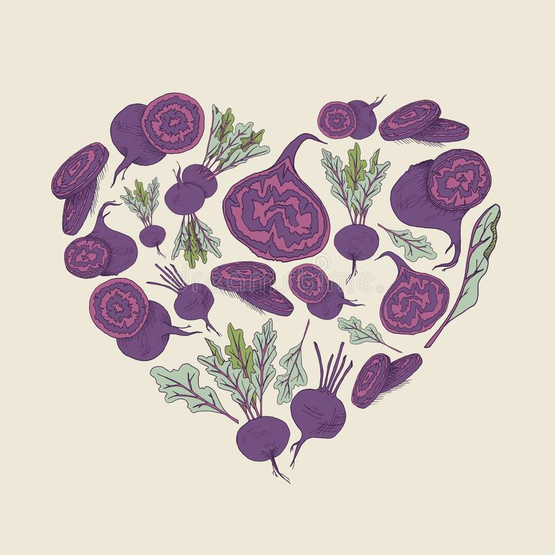 Vector background with beet root  illustration Hand drawn heart shape food image royalty free illustration