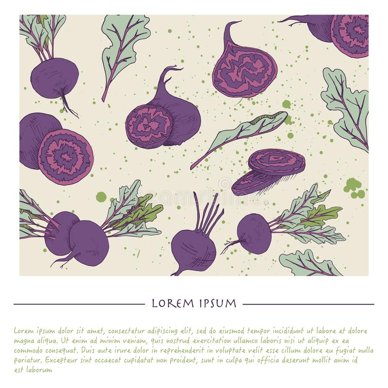 Food background with beet root vegetable Hand drawn colorful social media template stock illustration