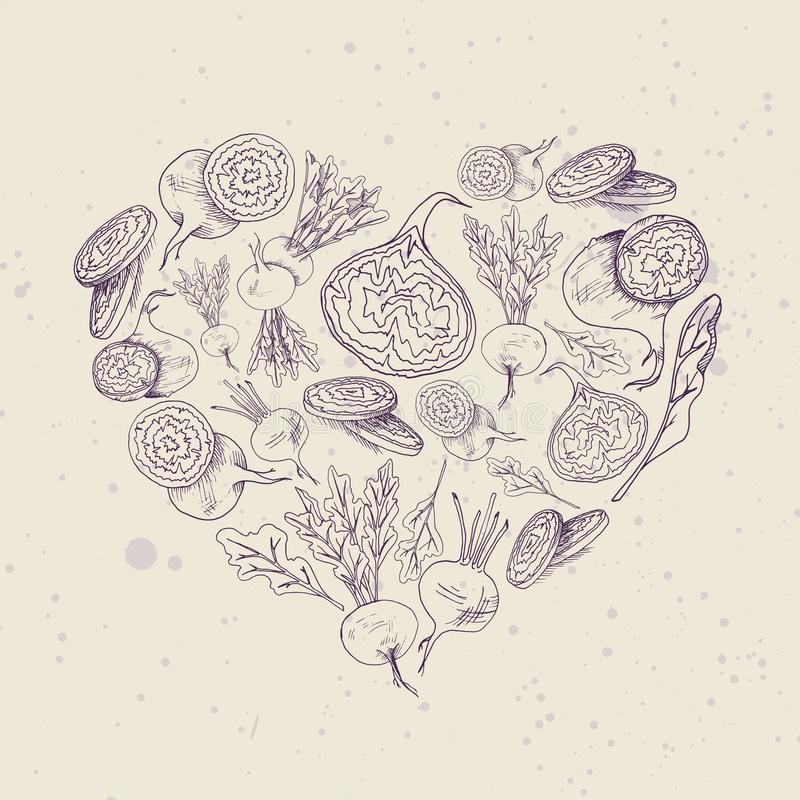 Vector background with beet root  illustration Hand drawn heart shape food image vector illustration