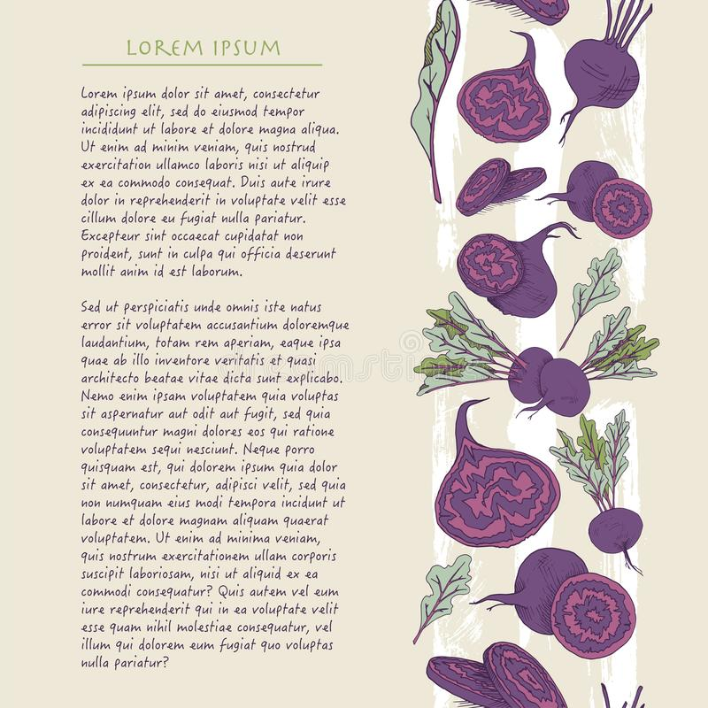 Food background with colorful beet root vegetable Hand drawn vertical social media template royalty free illustration