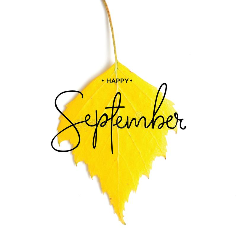 Inscription Happy September. Yellow autumn leaves isolated on white. royalty free stock image