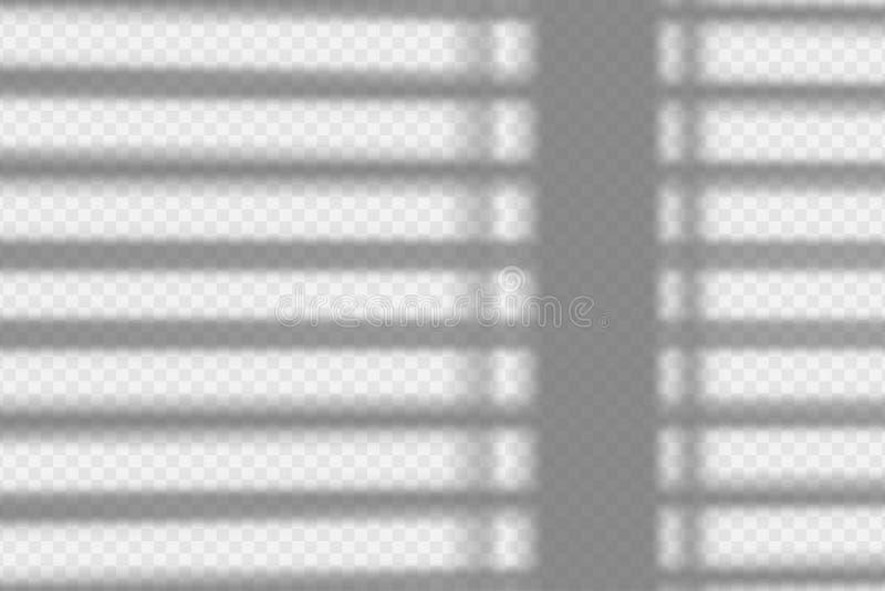 Realistic Shadows Dividers  Line Shadow  Transparent