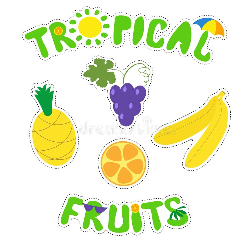 Tropical fruits and funny inscriptions. Set of bright fruit stickers. Vector isolate d illustration on white background. stock illustration