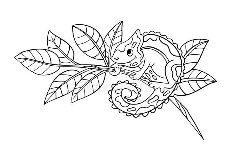 Vector Coloring Page With Cute Chameleon Sitting On A Branch. Stock Vector  - Illustration Of Contour, Jungle: 178870037